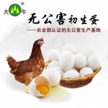 大午集团初生蛋鸡蛋新鲜鸡蛋无公害鸡蛋笨鸡蛋30枚装